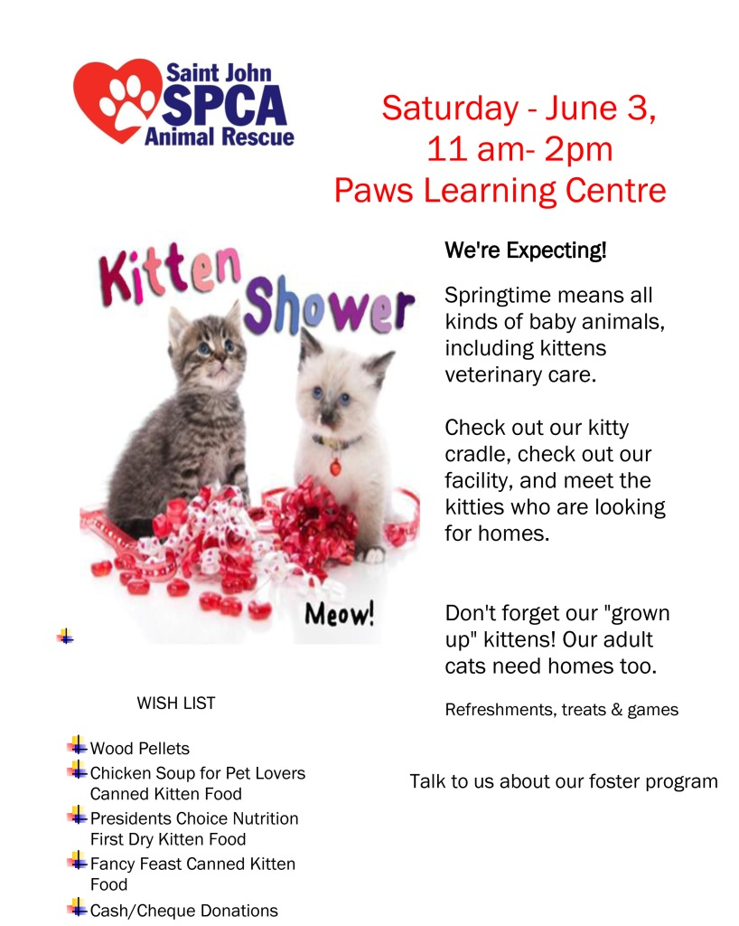 kitten shower poster